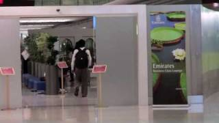 Transfer at Dubai International Airport (DXB) Terminal 3