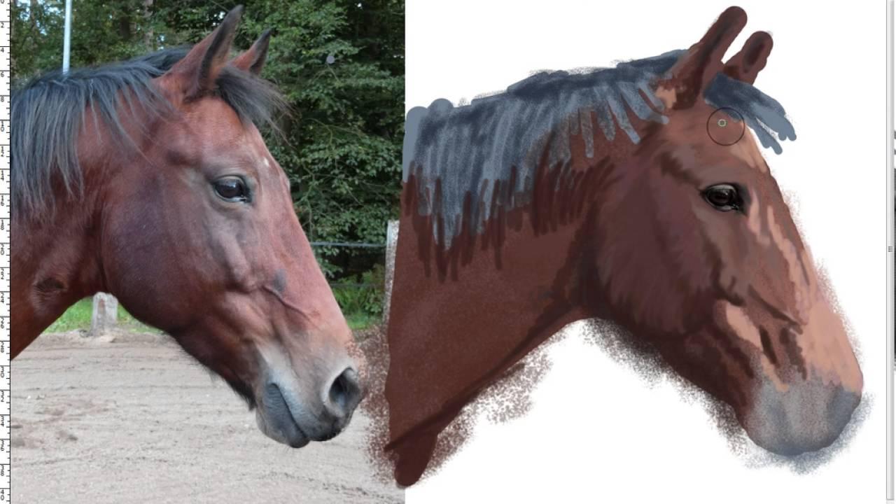 Pencil Drawings – Horses - Dream Driven Art  |Horse Art Drawings
