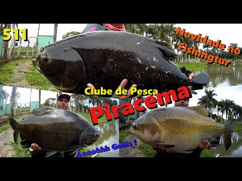 Piracema - Dia dos redondos e de um gigantesco Pirarucu - Fishingtur na TV 511