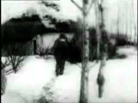 La bataille de Stalingrad / The battle of Stalingrad / die Schlacht von Stalingrad  5