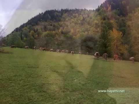 Kazim Koyuncu - Dido  /  Hayat TV