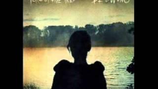 Porcupine Tree - Open car
