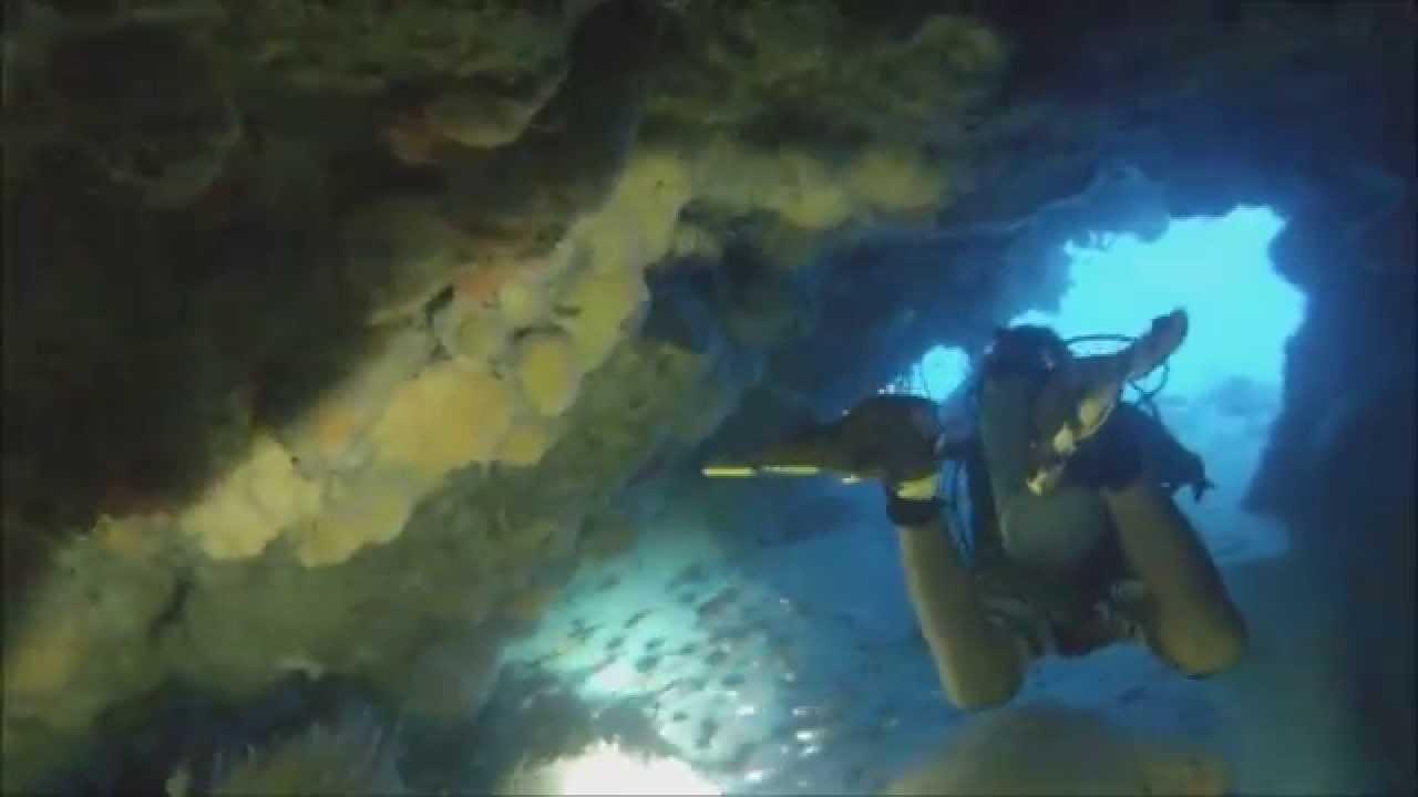 Scuba diving in cozumel mexico dive site columbia wall - Cozumel dive sites ...