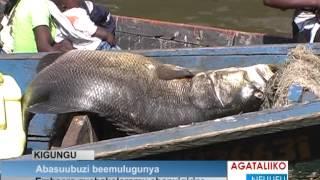Abasuubuzi beemulugunya thumbnail