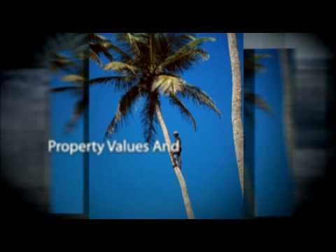 Invest Dominican Republic