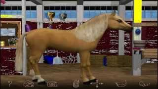 Barbie Riding Club Pc Game. How to care for a horse