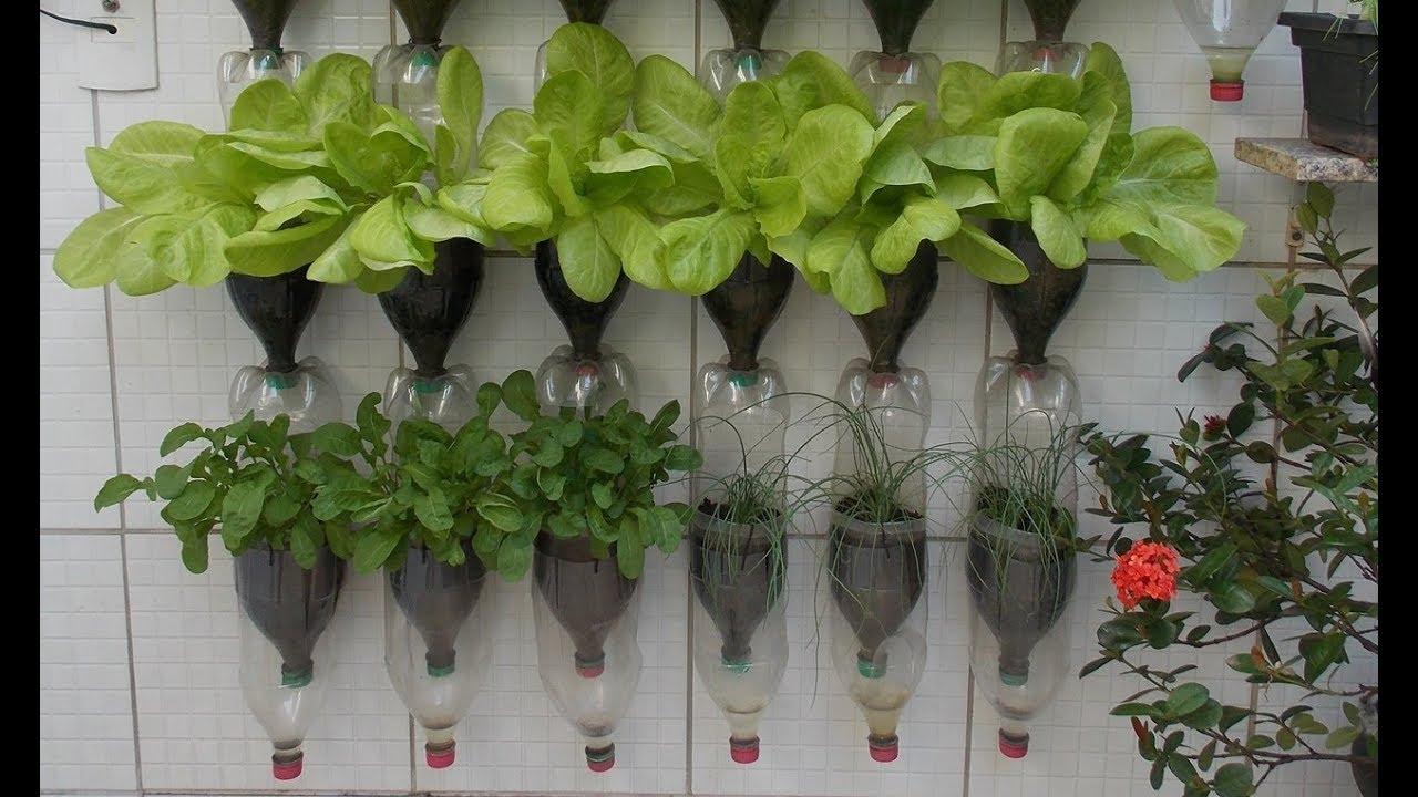 Bottle Garden  YouTube