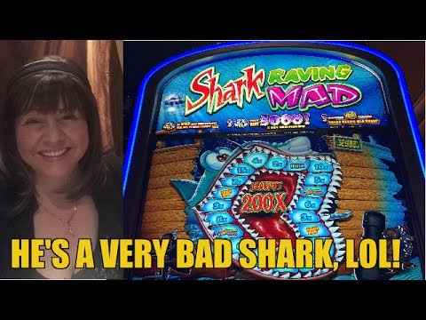 Shark casino game online slots usa legal