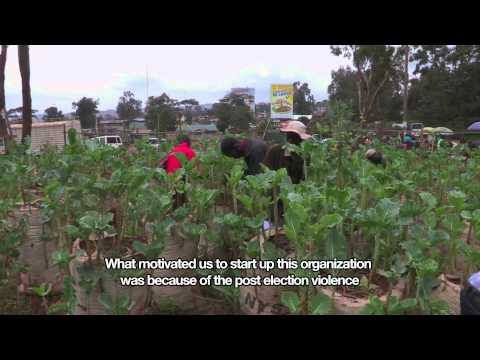 Urban Farming | African Slum Journal