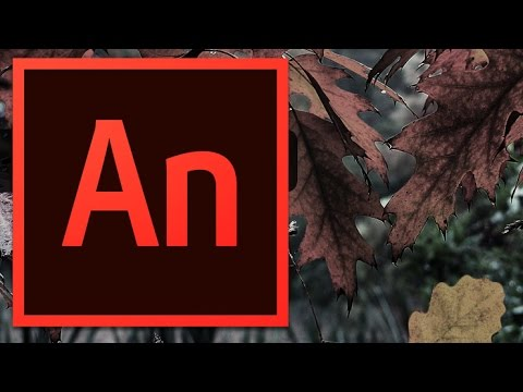 Adobe Animate CC: Add To Wordpress
