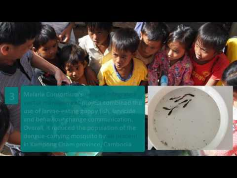 Fighting NTDs: Five years later, five years closer