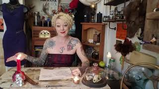 Brown in color magic and witchcraft THE TAXIDERMY WITCH
