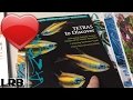 🔴 Amazonas Magazine Freshwater Aquarium & Tropical Discovery: My Favorite Aquarium Magazine