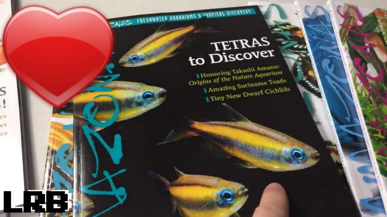 Freshwater fish magazine - Amazonas Magazine Freshwater Aquarium Tropical Discovery My Favorite Aquarium Magazine