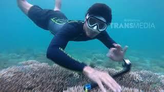 Video MY TRIP MY ADVENTURE - Pecahan Surga Di Maumere NTT (14/1/18) Part 5 download MP3, 3GP, MP4, WEBM, AVI, FLV Mei 2018
