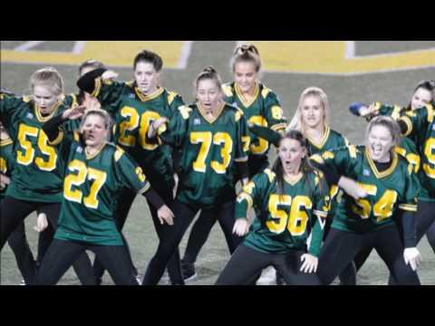 Sycamore High School Flyerettes Dance Team 2016/2017