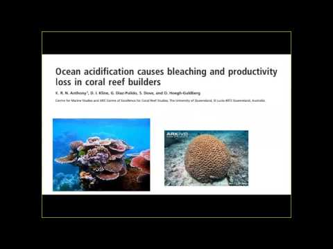 An acidifying ocean: Where might it lead?