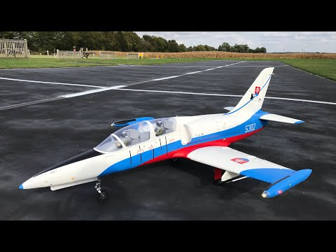 Freewing L39 Albatros on RCJETWERX 6000 6s