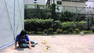 インタケチャンネル企画! 「インタケの挑戦!」 今回は無滑舌芸人のイ...