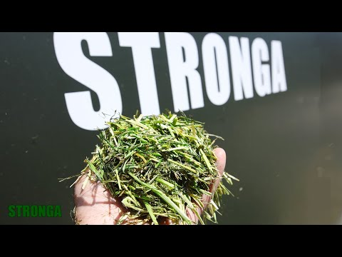 Drying Forage with Stronga | Creating Valuable Animal Feed