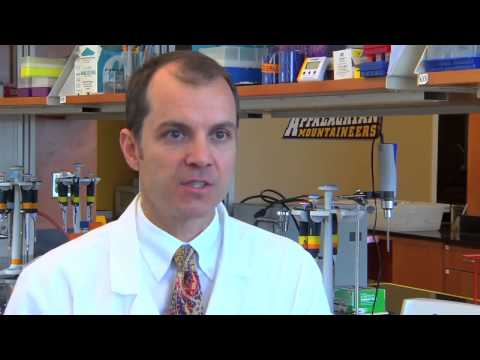 ASEA Frontiers: Metabolites