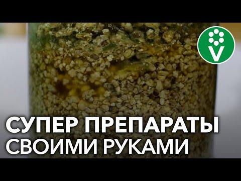 САМЫЙ ПРОСТОЙ СПОСОБ размножения биопрепаратов (триходерма, метаризин, боверин)