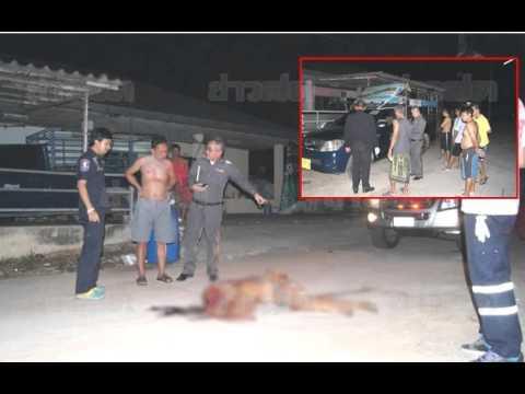 ลากศพติดรถ!! หนุ่มช็อกเห็นคนตายสยองโผล่กลางถนน หลังเสียงดังรถถอยเข้าออกข้างบ้าน