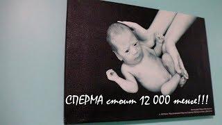 Сперма 12 000 тенге!