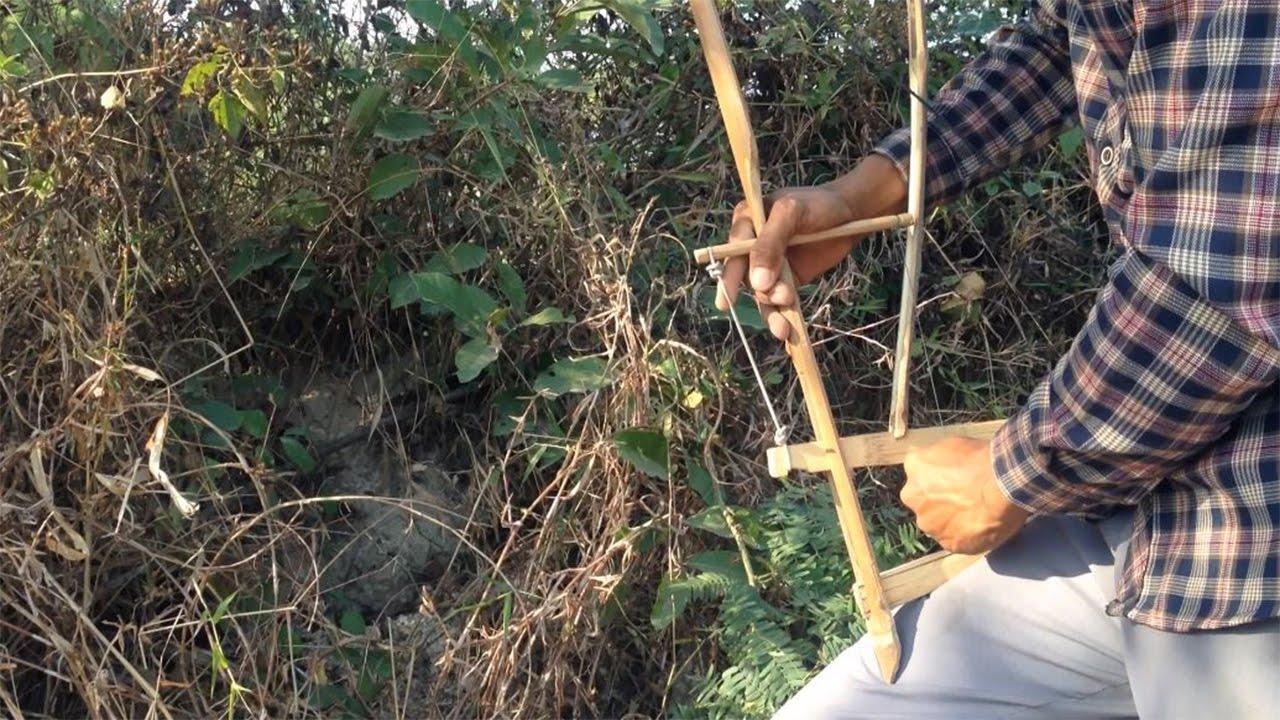 Bamboo Rat Trap In Cambodia