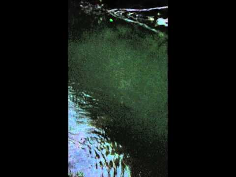 Câu cá sông Gâm Bảo Lạc 2
