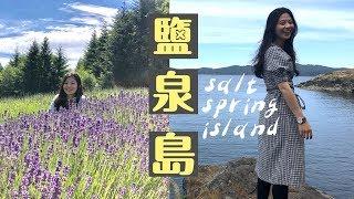 一直都很想去的小島!! 鹽泉島Salt Spring Island | Day1  薰衣草農場|葡萄酒莊|起司工廠|啤酒工廠| 小木屋