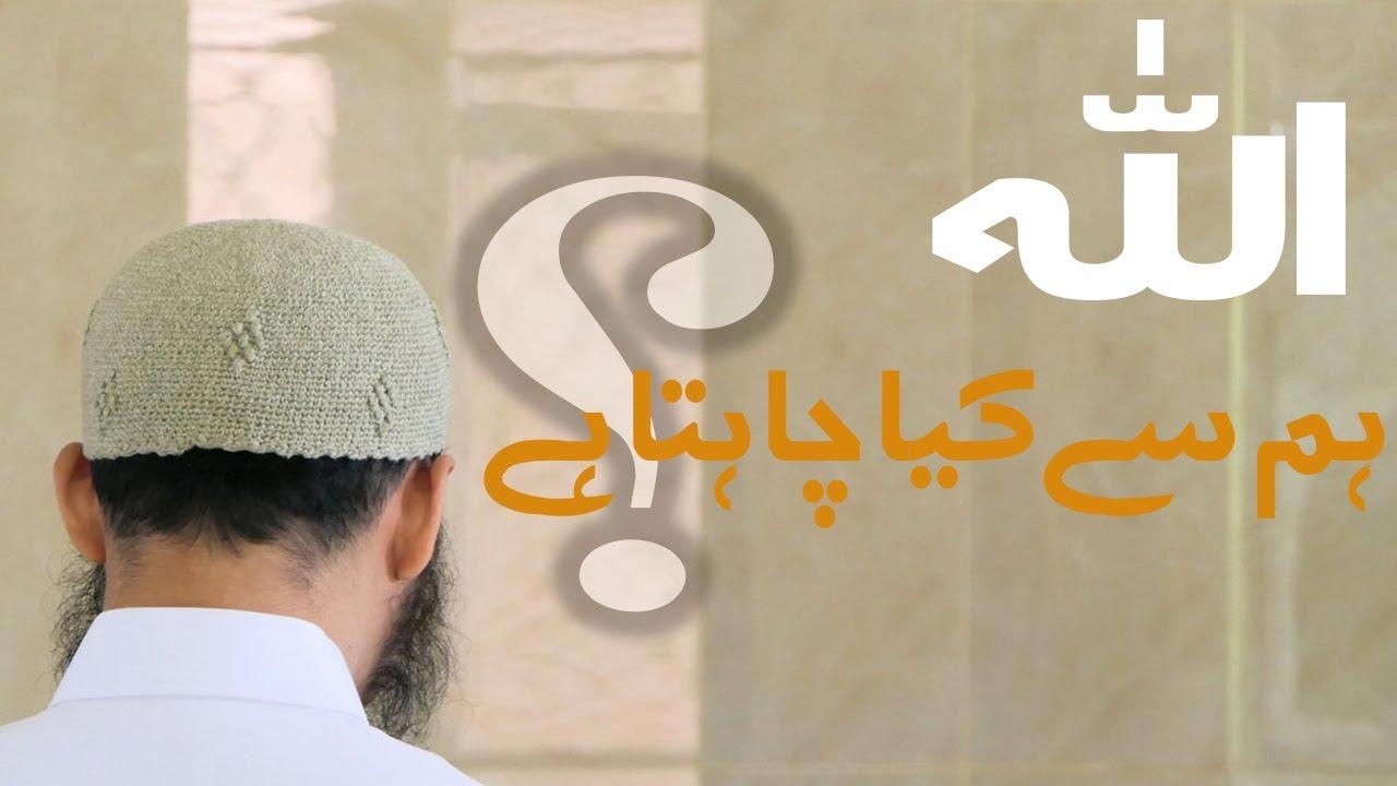 Allah hum se kia chahta hai||New bayan 2020||Corona virus||waba||covid 19