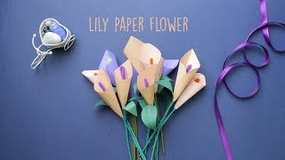 Lily Paper Flower   Paper Craft