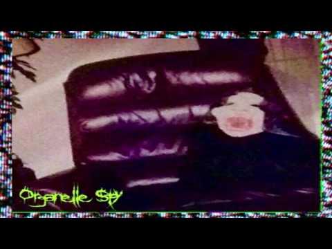 Organelle Spy - Shady Beach [Vaporwave]