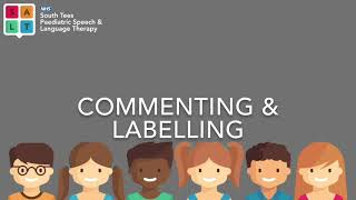 Commenting and Labelling