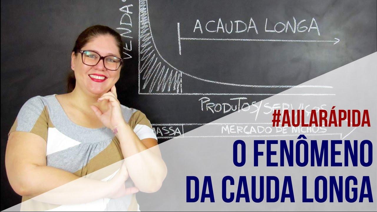 O MODELO CAUDA LONGA DAS PROVEDORAS DE CONTEÚDO VIA STREAMING