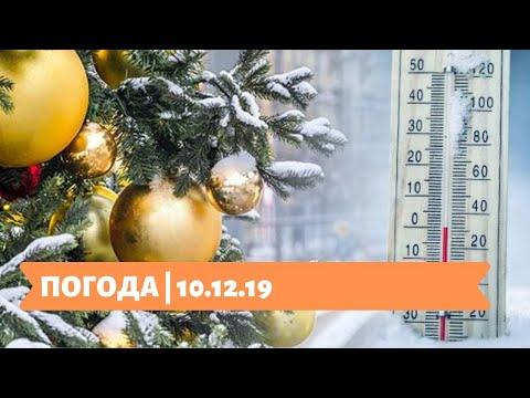 Телеканал Київ: 10.12.19 ПОГОДА