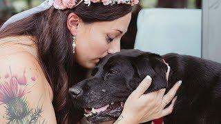 【感動】愛する飼い主さんの結婚式を見届けるまで 命をつないだ愛犬チャ...