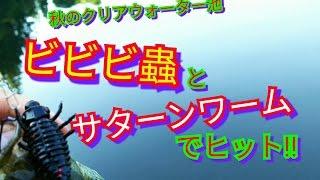 バス釣り動画です。