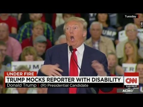 Image result for donald trump mocks disabled reporter