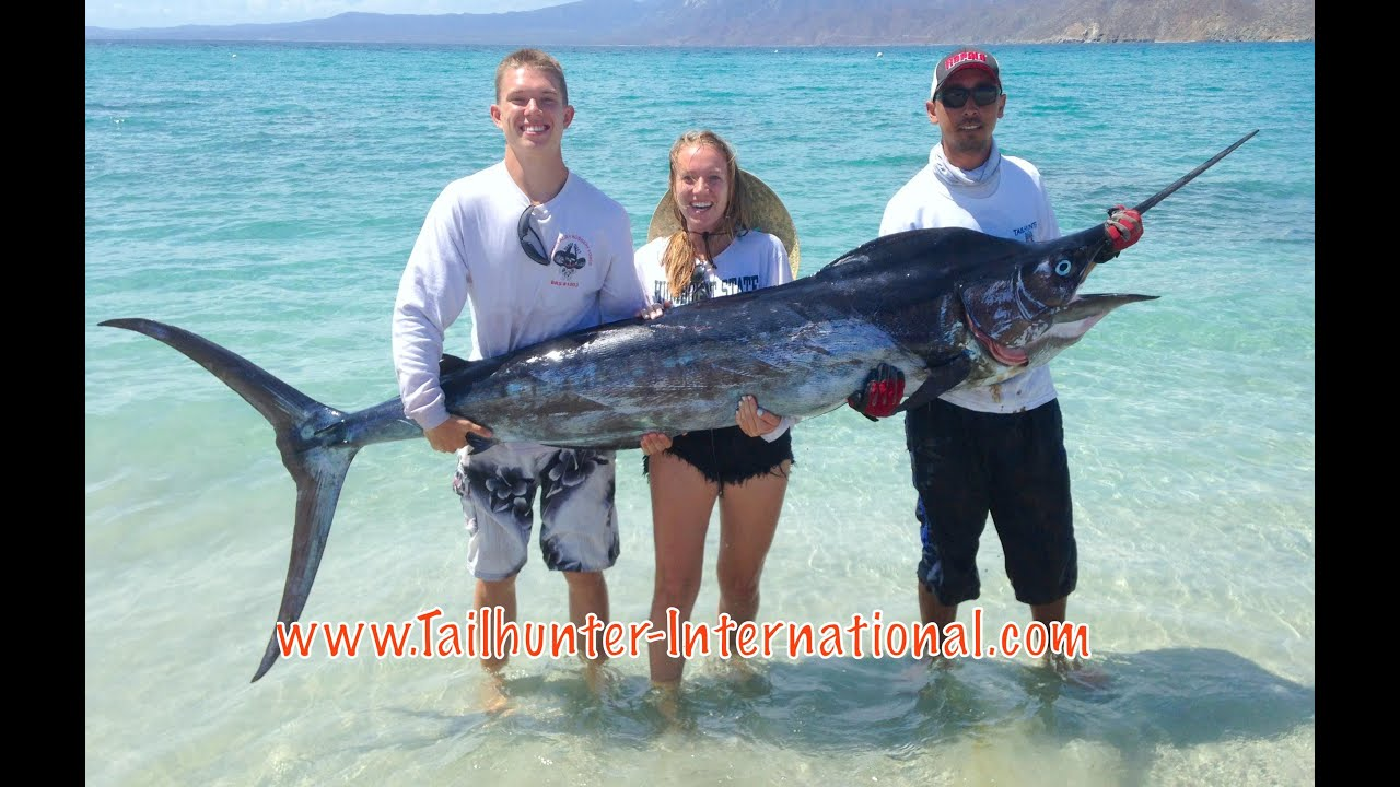 Tailhunter international weekly fishing report aug 1 7 for La paz fishing report