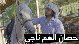 حصان العم ناجي / 2020