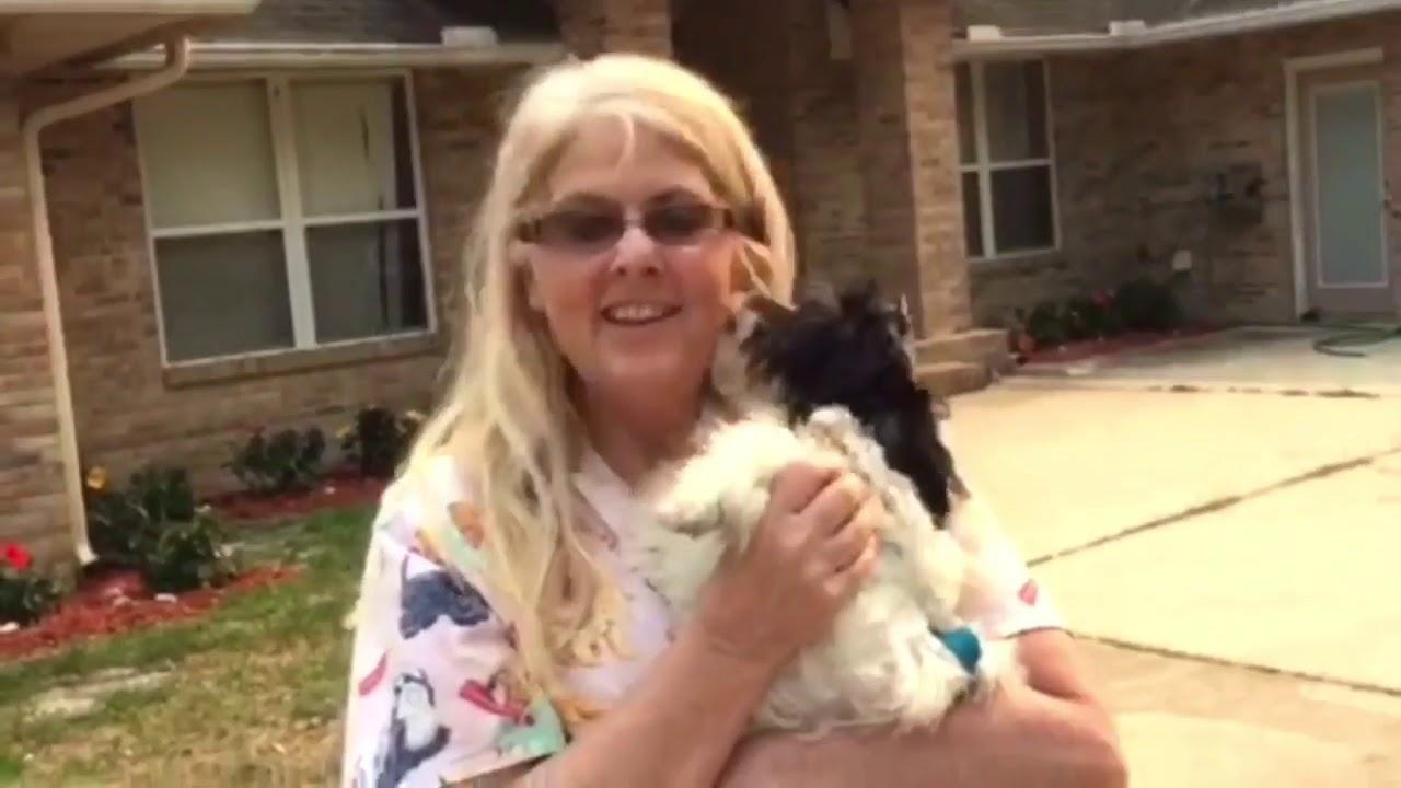 TLC Puppy Love
