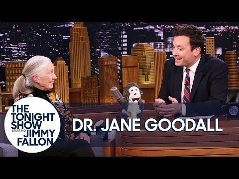 Dr. Jane Goodall Introduces Jimmy to Her Mascot Mr. H and Disneynature's Steve