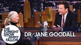 Dr. Jane Goodall Introduces Jimmy to Her Mascot Mr. H and Disneynature
