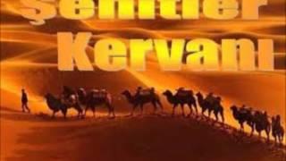 Şehitler Kervanı-Çınar yolunda
