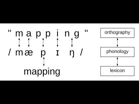 Orthographic mapping explainer