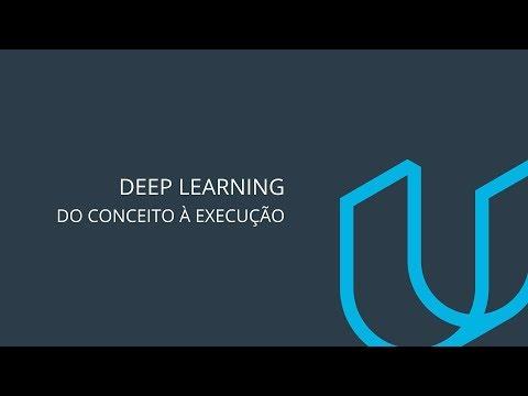 Deep learning: do conceito à execução
