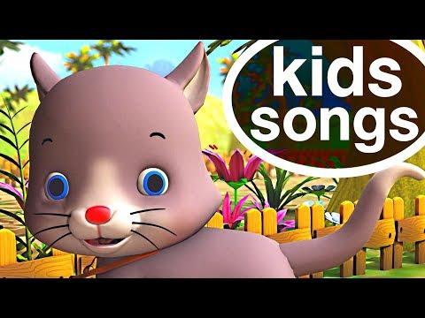 Animal Songs 🐹 🐤 Nursery Rhymes Playlist for Children | Educational Baby Songs