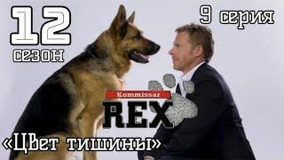 Комиссар Рекс 12 сезон 9 серия Цвет тишины